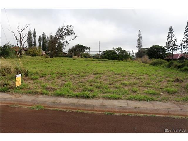 Photo of 0 Puunana St #D-071, Maunaloa, HI 96770